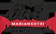 Academia Marian Cotoi